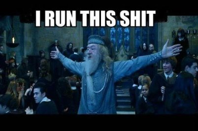 tumblr_static_dumbledore